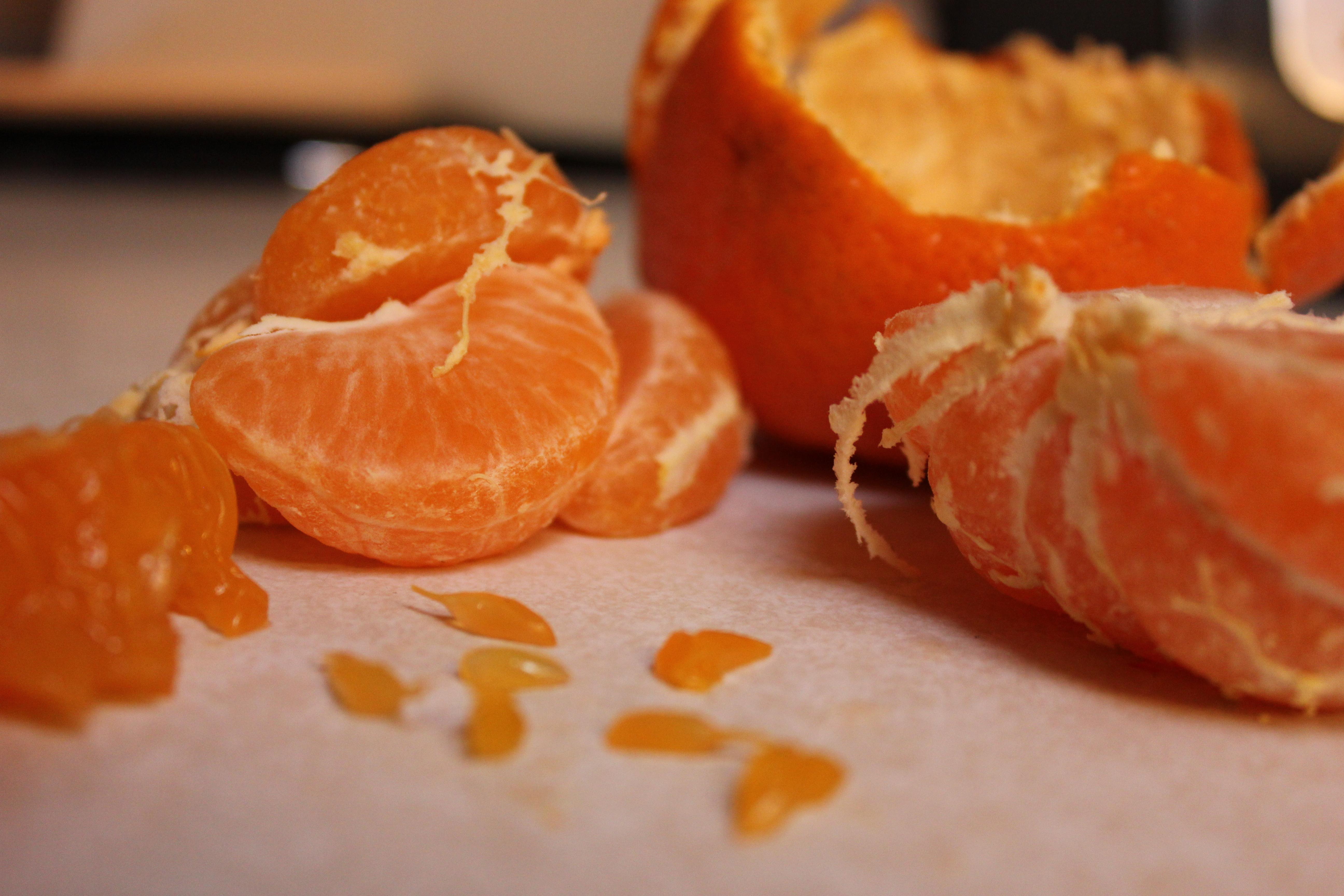 Orange Autopsy – Nutritious Movement
