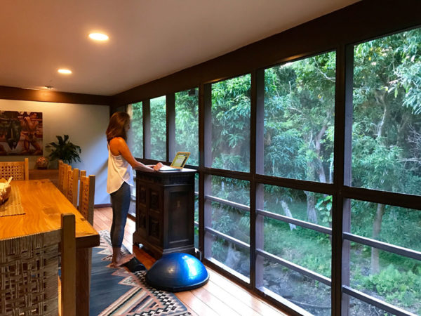 Overlooking my backyard rainforest. Plenty of room to calf stretch, top of the foot stretch, pelvic list and bosu balancing.