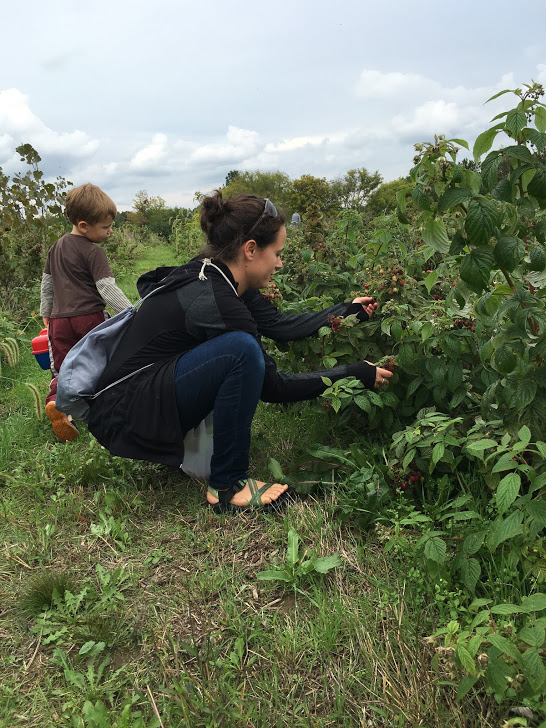 Berry Picking play date. Walking squatting moving for food. Showing the kids where and how berries happen. Best of all is our community of parents and kids spread out across the field dynamically sharing relationships between families.